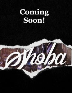 """A black rectangle with a tear-away strip showing a peek of a book cover underneath. The revealed section is the word """"Shoba"""" over a futuristic city background. At top of the blackout section are the words """"Coming Soon!"""""""
